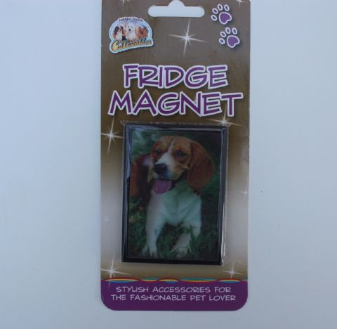 Beagle 3D fridge magnet